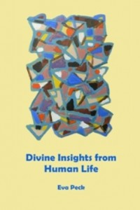 Divine Insights from Human Life cover